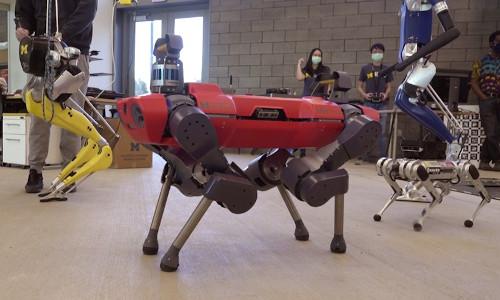 Robots walking in the University of Michigan's Ford Motor Co. Robotics Building.